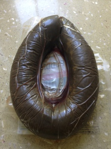 It looks like a horse-shoe shaped poo ...